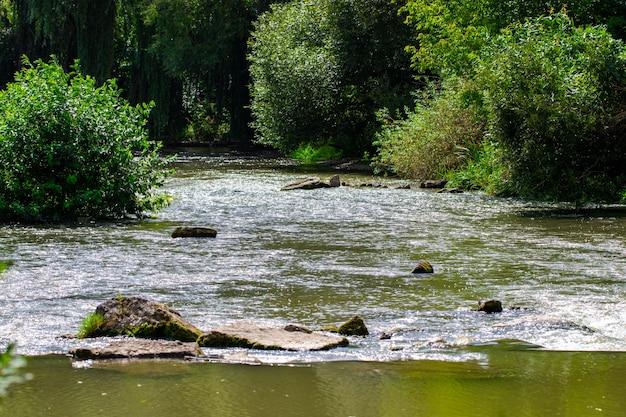 Красивая река с камнями летом в солнечный день.
