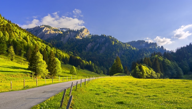 Beautiful road surrounded by grass-covered hills with the trees on the mountains in the back