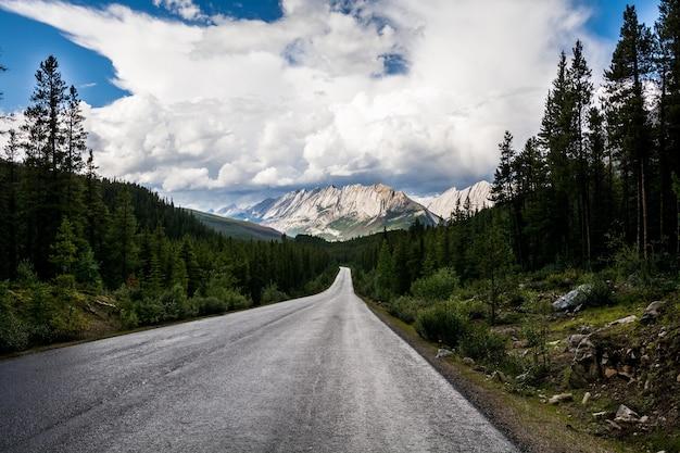 산으로 가는 아름다운 길. 비 후 산입니다. 캐나다 앨버타 재스퍼 주립공원 인근 고속도로