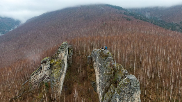 Beautiful rocky gray textured background with mosses and lichens. surface mountain