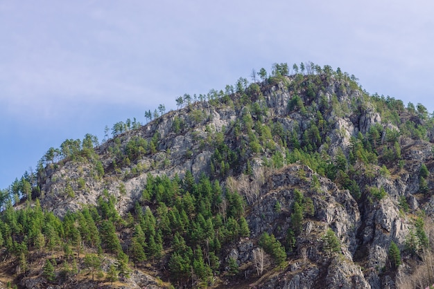 Beautiful rocky green mountain with greenery. natural textured background with rock and sky.