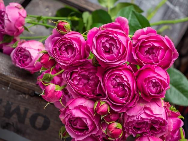 Красивые розы кустовые розы, свадебные цветы крупным планом.