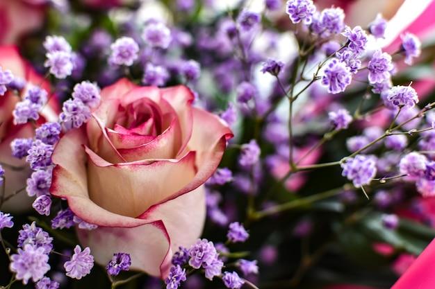 カスミソウの小さな花、ぼやけた背景を背景に美しいバラのクローズアップ