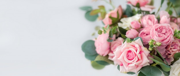 Beautiful rose flowers on light background