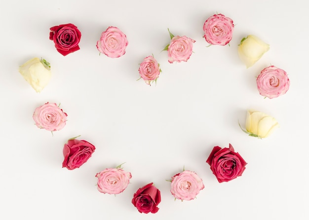 無地の背景に美しいバラのフレーム