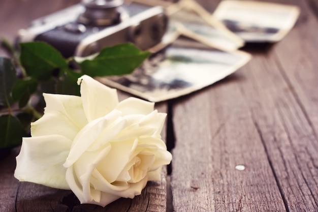 Beautiful rose, old photos and camera.