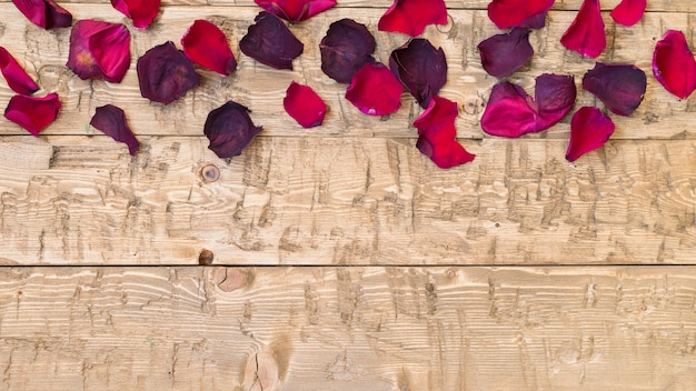 Beautiful rose petals on rustic vintage background. old wooden boards.