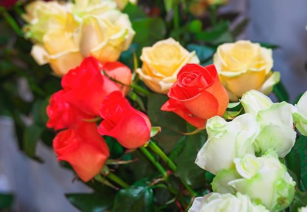 花屋で売られている美しいバラ。