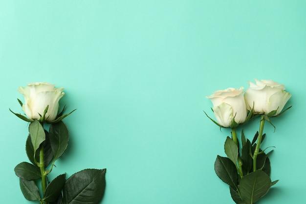 민트에 아름다운 장미