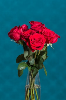 Beautiful roses in vase in front of blue wall