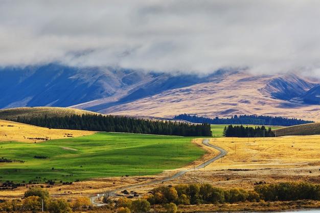 日の出のニュージーランドの美しい田園風景