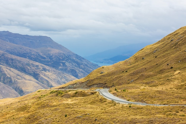 뉴질랜드의 아름다운 시골 풍경-푸른 언덕과 나무