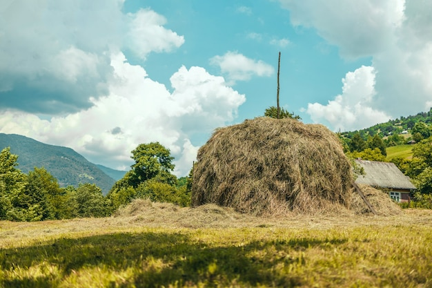 Beautiful rural landscape with a big pile of haystack in a field on a hot summer day