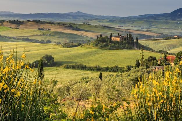 イタリアの朝の美しい田舎のトスカーナの風景