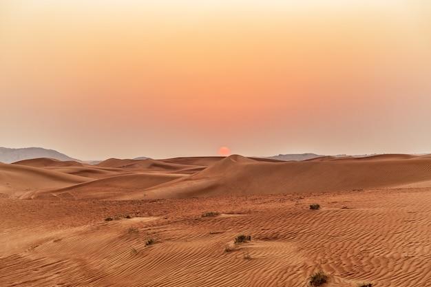 砂漠の美しい砂丘