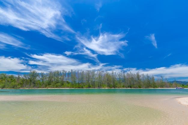 Beautiful sandy beaches and pine tree views at paradise islandin krabi thailand