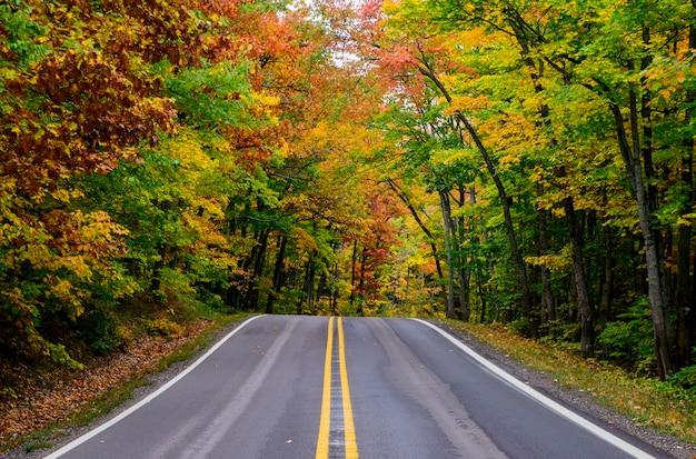 미시간에있는 구리 항구의 아름다운 포화 가을 색상