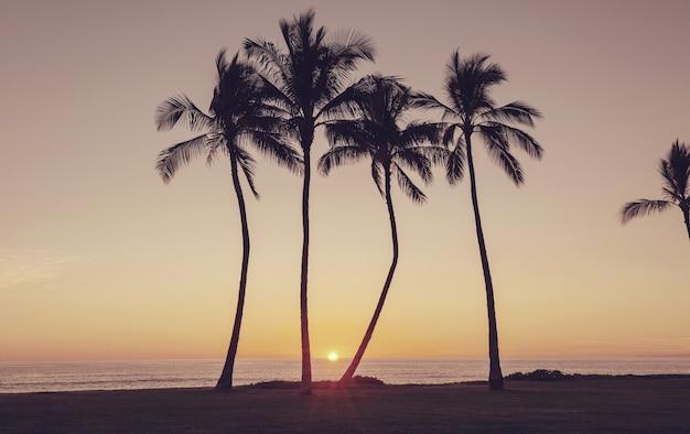ハワイの夕日の美しいシーン