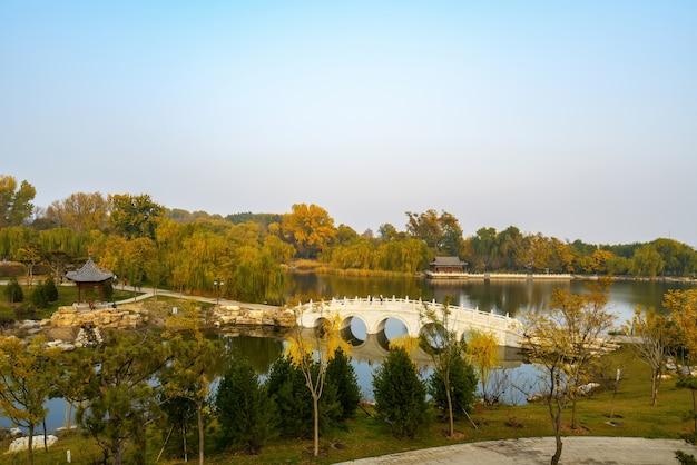 Beautiful scenery in autumn park
