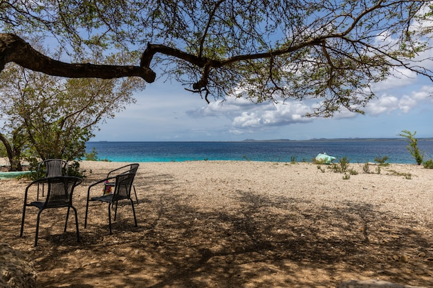Beautiful scenery of a beach perfect for spending summer afternoons in bonaire, caribbean
