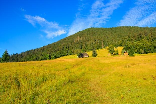 Beautiful scenery, beautiful mountain scenery, the carpathian mountains.