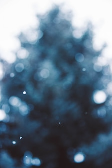 Beautiful scenery of falling snow in focus and a pine tree