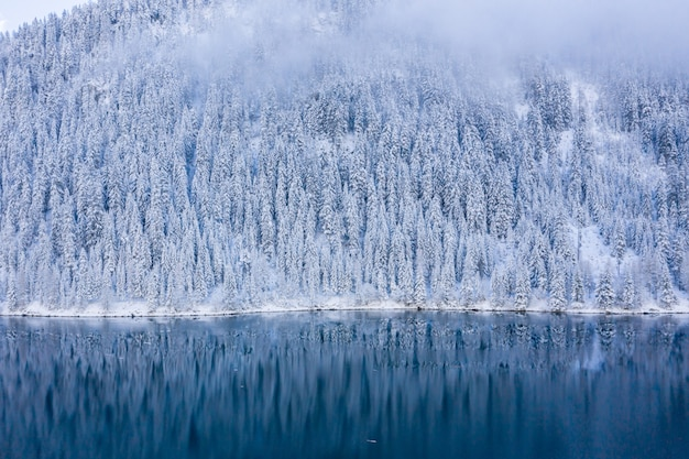 Beautiful scenery of a lake surrounded by snow-covered trees in the swiss alps, switzerland