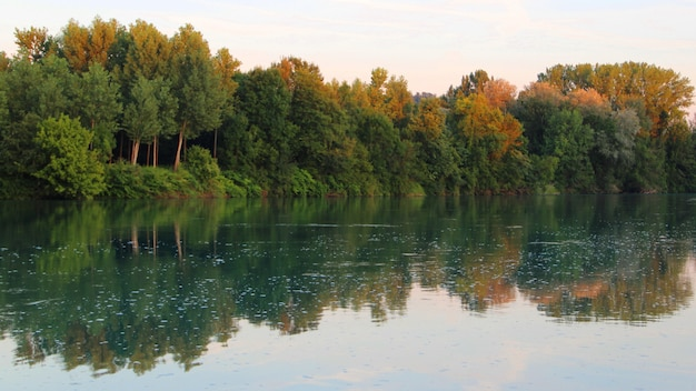 Beautiful scenery of a lot of trees reflected in the lake under the clear sky