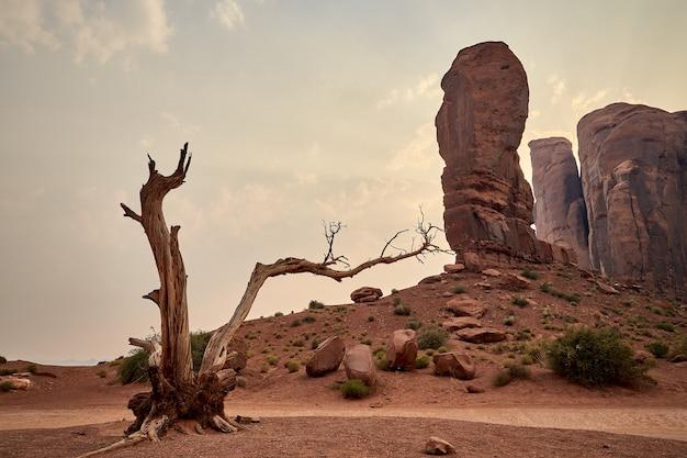 Splendido scenario del paesaggio mesas nel parco nazionale di bryce canyon, utah, stati uniti d'america
