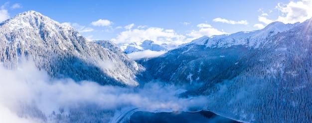 Красивый пейзаж леса в заснеженных альпах зимой