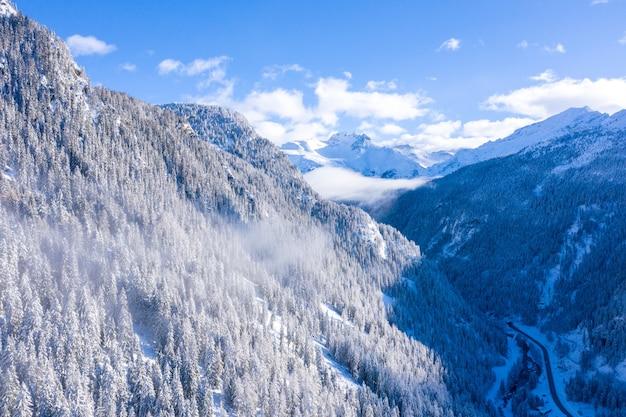 スイス、スイスアルプスの冬の木々の多い森の美しい風景