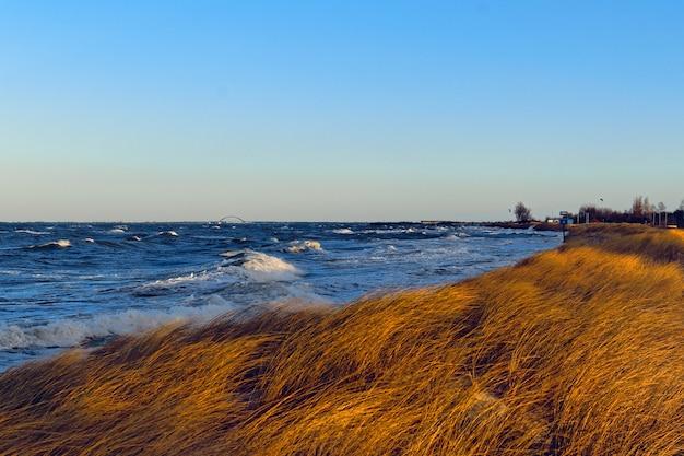 Красивый пейзаж травянистого холма у моря под захватывающим дух небом