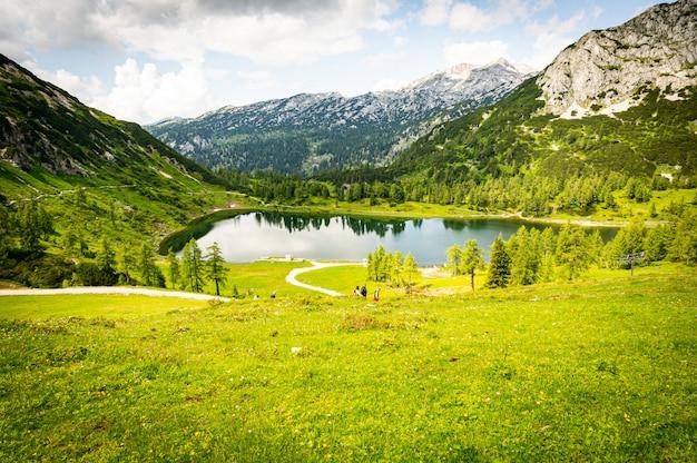 흐린 하늘 아래 오스트리아의 알프스 산맥 근처 녹색 계곡의 아름다운 풍경