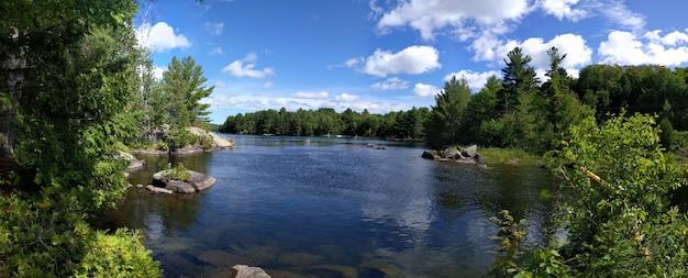 曇り空の下、緑の木々に囲まれた湖の美しい風景