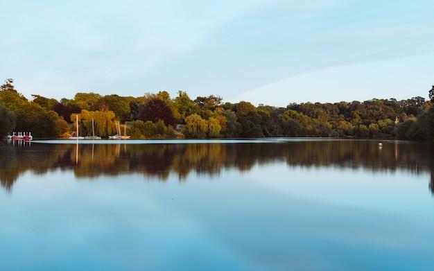 Красивый пейзаж озера с отражением окружающих зеленых деревьев