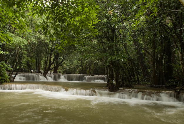 Красивые пейзажи мощного водопада, текущего в реке в лесу.