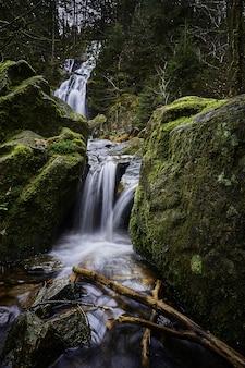 コケに覆われた岩の近くの森の強力な滝の美しい風景