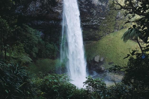 Красивый пейзаж мощного водопада в лесу, в окружении зеленых деревьев