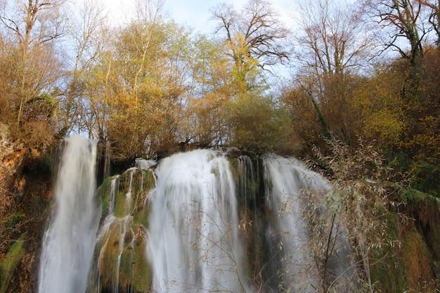 Красивые пейзажи мощного водопада в окружении деревьев в лесу