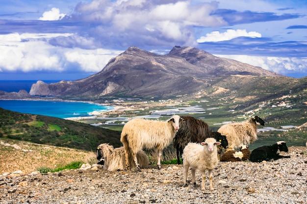 Красивые пейзажи греции
