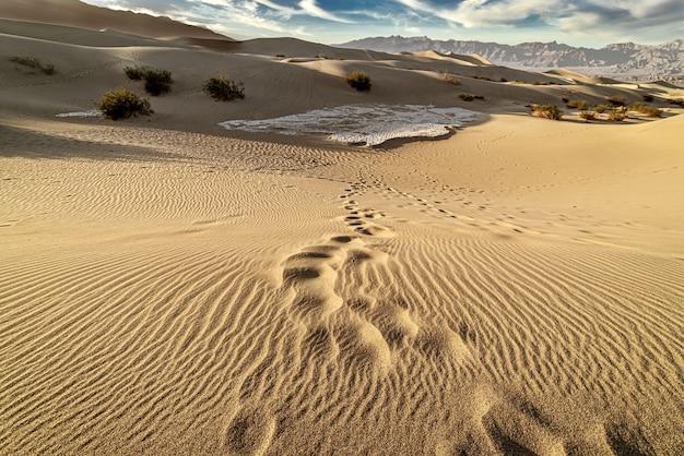 Красивые пейзажи плоских песчаных дюн мескит, долина смерти, калифорния