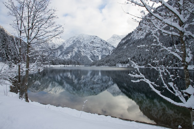 Beautiful scenery of the plansee lake surrounded by high snowy mountains in heiterwang, austria