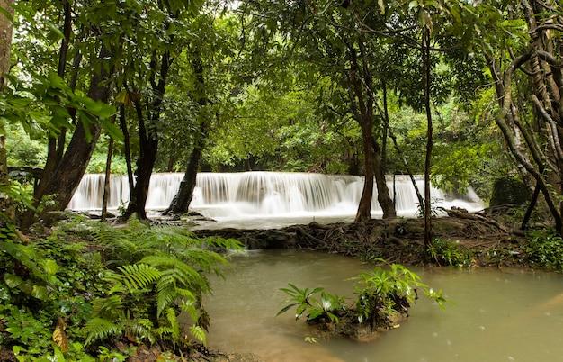 Splendido scenario di una potente cascata che scorre in un fiume in una foresta