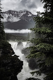 Beautiful scenery of a powerful waterfall surrounded by rocky cliffs and trees in canada