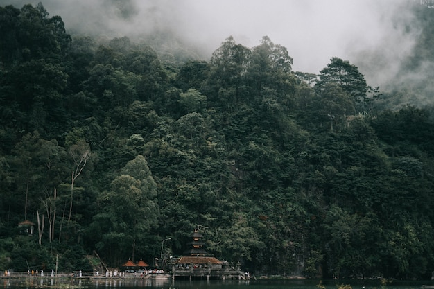 Beautiful scenery of rainforest covered in fog near the beautiful lake with buildings