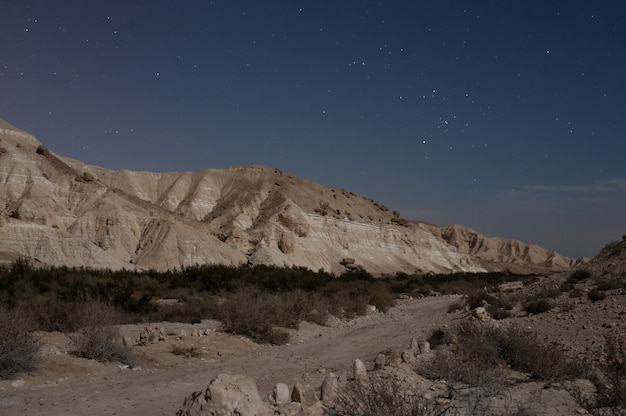 Splendido scenario di montagne rocciose sotto un cielo stellato