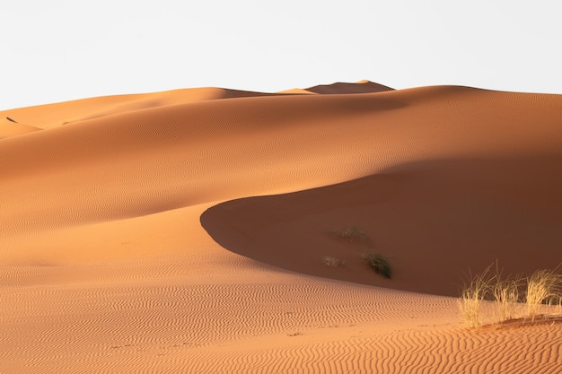 Beautiful scenery of sand dunes in a desert area on a sunny day Free Photo
