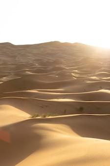 Splendido scenario di dune di sabbia in una zona desertica in una giornata di sole