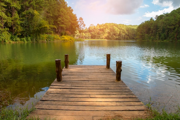 Beautiful scenery - wooden dock beside lake.