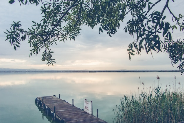 Beautiful scenery of a wooden dock by the sea surrounded by green plants